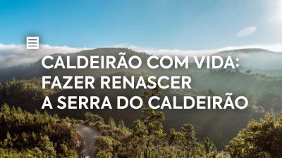 Caldeirão com Vida: Fazer renascer a Serra do Caldeirão