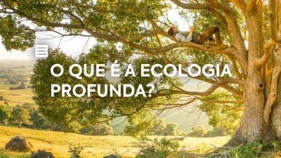 O que é a Ecologia Profunda?