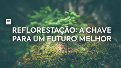 Reflorestação: a chave para um futuro melhor