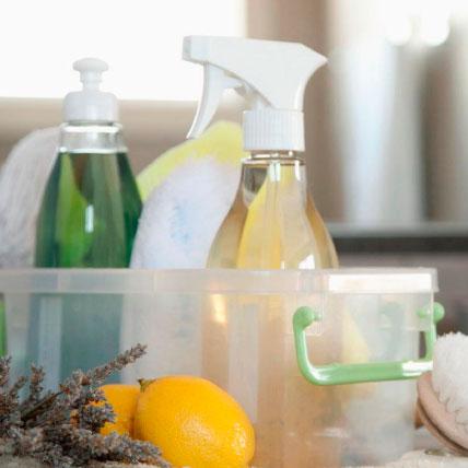 Workshop Detergentes Naturais
